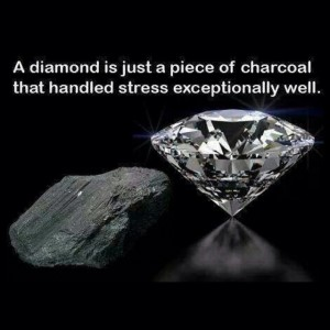 A diamond is just a piece of charcoal that handled stress exceptionally well.